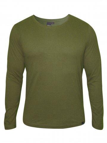 https://static2.cilory.com/144248-thickbox_default/rigo-green-round-neck-t-shirt.jpg