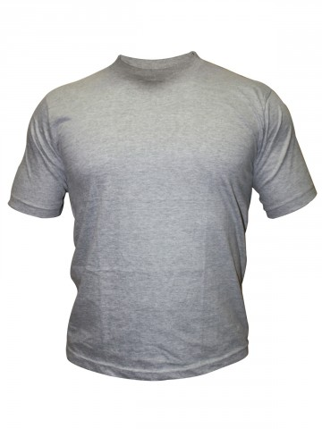 https://static.cilory.com/30955-thickbox_default/tsx-plain-grey-round-neck-t-shirts.jpg