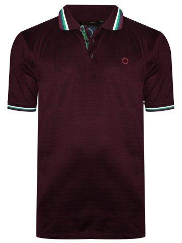 https://static7.cilory.com/377083-thickbox_default/proline-polo-maroon-t-shirt.jpg
