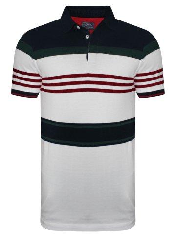 https://static1.cilory.com/392555-thickbox_default/arrow-striped-polo-t-shirt.jpg