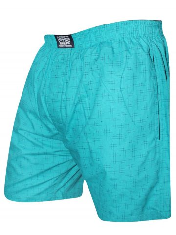 https://static8.cilory.com/408214-thickbox_default/levis-green-boxer-shorts.jpg